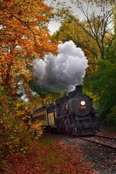 maya47000:  Autumn train by Jonathan Steele