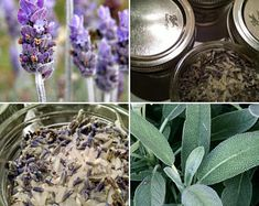 Magickal Goods & Up-cycled Treasures by BoxofReign on Etsy Witchcraft Herbs, Magick, Witchcraft Supplies, Kitchen Witch, Pagan, How To Dry Basil, Mother Nature, Healing, Make It Yourself