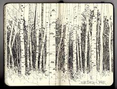 Silver birch sketchbook pages, sketchbook ideas, art sketches, pen sketch, Artist Journal, Artist Sketchbook, Sketchbook Inspiration, Sketchbook Ideas, Tree Art, Art And Illustration, Collages, Stencil, Art Drawings