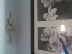 ....de flores y caracolas