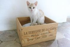 love these wine crates as cat beds