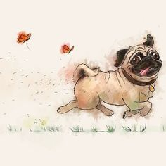 The Furminator pug watercolor like art