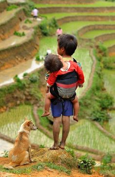 A young boy is seen here, carrying his small brother on his back with his dog waiting for his parents who is working in a field.