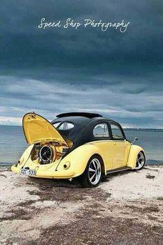 ..._VW bug