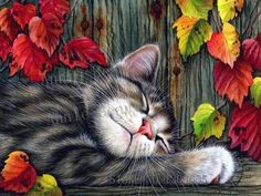 Diamond embroidery mosaic by numbers craft kit.  A tabby cat sleeps in the autumn leaves. Purrrr- fect.
