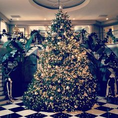 Check out the Kardashian's Christmas Tree! on In Flex We Trust – It's a Kardashian Kristmas! Check out their supersized Christmas tree… Unique Christmas Trees, Christmas Tree Design, Xmas Tree, Beautiful Christmas, Christmas Tree Decorations, Christmas Staircase, Christmas Time Is Here, Family Christmas, Christmas Ideas