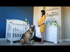 Stunning Time Lapse Of A Pregnancy