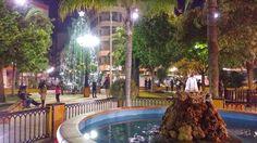 'Weihnachtszeit in Torrevieja' aus dem Reiseblog 'Verliebt in eine alte Hafenstadt: Torrevieja'