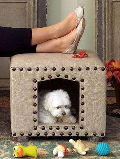 Seu cãozinho ou gato merecem conforto. Veja estas 12 ideias clicando na foto