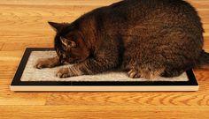 Lo Floor Scratcher by Square Cat Habitat
