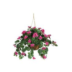 """Bougainvillea Hanging Basket - 24""""H (3.300 RUB) ❤ liked on Polyvore featuring home, home decor, floral decor, flowers, fillers, flowers / foliage, plants, artificial flowers, decorative accents and fake flower arrangement"""