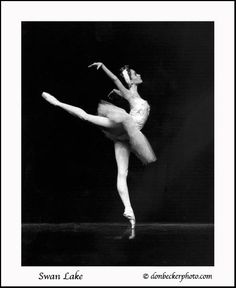 Image from from my favorite ballet, Swan Lake