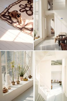 Trend hunter li edelkoort's house in Paris. That sunshine!