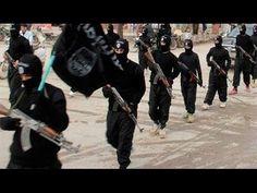 Террор и его команда.Специальный репортаж (2015)