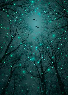 Silently, One by One, the Stars Blossomed (Geometric Stars Remix) Series: A Walk Through the Woods Color: Mint/Aqua/Glow Green Galaxy Deco Nature, All Nature, Geometric Star, Shades Of Teal, Illustration, Blue Aesthetic, Night Skies, Wallpaper Backgrounds, Wallpapers