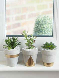 Succulent Planters DIY See my quick DIY tutorial to make these pretty gold geometric concrete succulent planter pots.See my quick DIY tutorial to make these pretty gold geometric concrete succulent planter pots. Succulent Planter Diy, Diy Planters, Succulents Garden, Gold Planter, White Planters, Garden Shrubs, Hanging Planters, Fake Plants Decor, Plant Decor