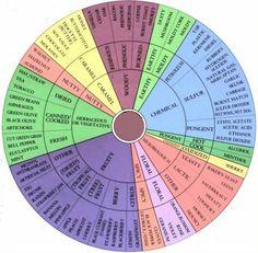The Wine Tasters Wheel (Snooth)