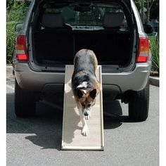 """PetStep Folding Dog Ramp – The PetStep II Folding Dog Ramp helps your pet overcome stairs, vehicles, and furniture. Simply unfold the ramp and prop one end against a truck bed, vet table, or top step. Animals can walk up or down at a gentle incline instead of struggling, jumping or being lifted. With its sturdy structure and rubberized surface, this dog ramp helps reduce arthritis and dysplasia pain and cuts down on back strain. """"Like"""" or """"Pin"""" this and use discount code """"Pin5"""" for 5% off."""