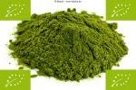 1 kg de polvo de pasto de trigo orgánico, 100% puro