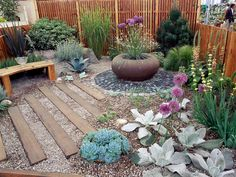 Low-maintenance plants like succulents, ornamental grasses and alliums add color and height to this backyard garden. Multicolored pebbles disguise a weed-preventing membrane while adding texture underfoot.