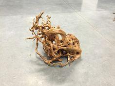 UW02 Redmoor Wood -- driftwood shrimp moss discus manzanita spiderwood spider  #wood