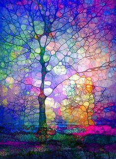 The Imagination Of Trees Print by Tara Turner