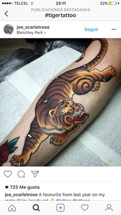 Tiger Tattoo Sleeve, Cat Tattoo, Sleeve Tattoos, Japanese Tiger Tattoo, Japanese Dragon Tattoos, Traditional Tiger Tattoo, Predator Tattoo, Becoming A Tattoo Artist, Sailor Jerry Tattoos