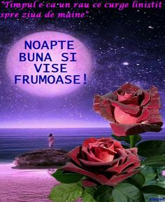Noapte... Day Of Tomorrow, Clara Alonso, Good Night Quotes, Beautiful Dream, Nicu, Dan, Floral, Sweet Dreams, Good Night