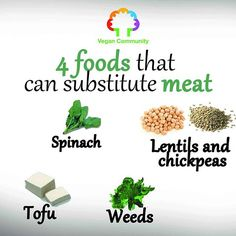 4 Foods that can substitute meat 💚 ☆☆☆☆☆☆☆☆☆☆☆☆☆☆ .  #vegan #Vegancommunity #rpvegancommunity #govegan #peta #pet #yoga #like #Veganfoodlovers #veganfood #veganrecipe #veganrecipes #fatloss #fatfree #fat #Vegetarian #VeganFitness #Veganismu #veganhawaii #veganjapan #veganmanila #veganhongkong #veganasia #veganoceania #veganrecipe #veganfoodshare #veganfoodlovers #plantbased #vegan