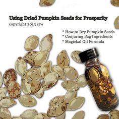 Three Simple Magickal Prosperity Projects Using Dried Pumpkin Seeds - Perfect for when carving a jack-o-lantern and the Witch's Sabbeth of Samhain Wiccan Spells, Magic Spells, Magick, Luck Spells, Money Spells, Easy Spells, Healing Spells, Healing Herbs, Mabon