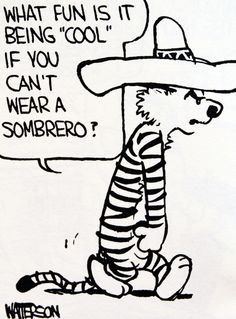 "Calvin and Hobbes QUOTE OF DAY (DA): ""What fun is being 'cool' if you can't wear a sombrero?"" -- Bill Watterson"