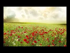 """""""The Lilies Of The Field"""" (Piano Instrumental) - YouTube"""