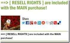 ==> [ RESELL RIGHTS ] are included with the MAIN purchase!