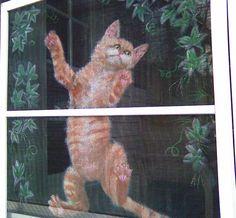 Window Screen Art | an art gallery in the neighborhood and along the street
