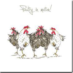Chicken Card Poultry In Motion Greeting Card Funny Chicken