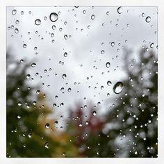 Droplets of Rainshine