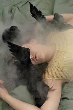 Crows Ravens:  Caryn Drexl.