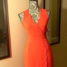 Brand new J. Crew dress. Beautiful and elegant J.crew dress. Brand new with tags. Original price is $168 J. Crew Dresses