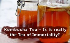 """Ancient ChineseMedicine refers to the Kombucha tea as the Tea of Immortality and the elixir of life.Kombucha tea has been enjoying the spotlight for a few years now — partly because probiotics have gone from simply being """"funky health supplements"""" to finding their way into a wide variety of foods, and also because the tea possesses some amazing health benefits as well."""