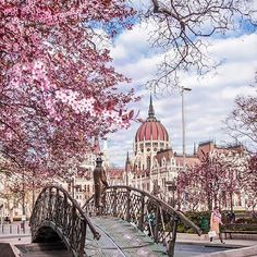Spring is in the air  ~ Budapest, Hungary.  Photo: @kardosildi