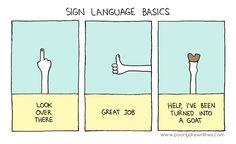 Sign Language Basics.