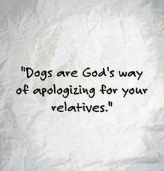 Thank goodness for dogs.