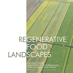 Regenerative food landscapes. A strategy towards regenerative agri-food landscapes in the province of South Holland. Conceptual Framework, South Holland, Research Question, Circular Economy, Environmental Issues, Sustainable Development, The Province, Delft, Ecology