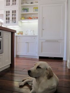 Cabinets and wide wood floor...and the pup looks so nice on that floor!