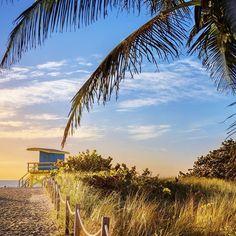 Miami beach, Florida Mexico Beach Florida, Florida Beaches, South Florida, Miami Beach, Florida Sunshine, Sunshine State, Beautiful Vacation Spots, Everglades National Park, Moving To Florida