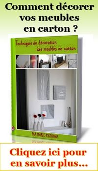 1000 images about meubles en carton on pinterest for Meuble carton tuto