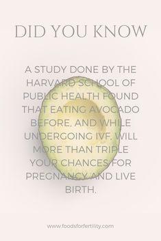 iui success tips infertility treatment \ iui success tips + iui success tips getting pregnant + iui success tips pineapple + iui success tips infertility treatment + iui success tips pcos Ivf Success Tips, Superfoods, Infertility Quotes, Fertility Diet, Fertility Doctor, Pregnancy Tips, Pregnancy Memes, Early Pregnancy, Getting Pregnant