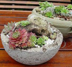 Kvetináče a dekorácie z hypertufy | Záhrada Artmama.sk Cement Planters, Concrete Crafts, Succulents, Diy Crafts, Gardening, Plants, Ideas, Author, Cactus