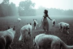 ImageFind images and videos about girl, dark and wolf on We Heart It - the app to get lost in what you love. Story Inspiration, Writing Inspiration, Character Inspiration, Writing Ideas, Creative Writing, She Wolf, Wolf Girl, Feral Heart, Amazing Photography