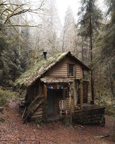 """Cabin in the woods of Washington. """"Son of man, how is the wood of a vine different from that of a branch from any of the trees in the forest? Ezekiel Photograph by © Cabin In The Woods, Cottage In The Woods, Witch Cottage, Wood Cottage, Cabins In The Mountains, Mountain Cabins, Little Cabin, Little Houses, Tiny Houses"""
